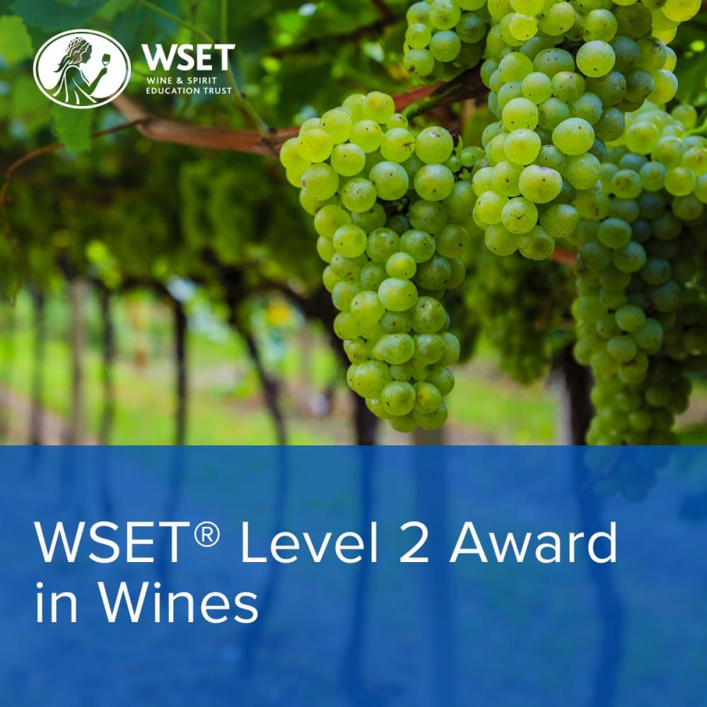 WSET Wines Level2 1600x1600 - Wine Courses