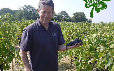 Celebrate St Patrick's Day and join our tasting with Irish Winemaker, Simon Tyrrell.
