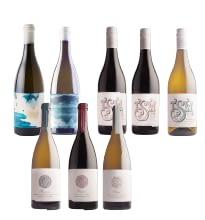 tsr3 01 - New Trizanne Signature Wines, South Africa - 'New Range Tasting'  - 8x100ml Sample Set