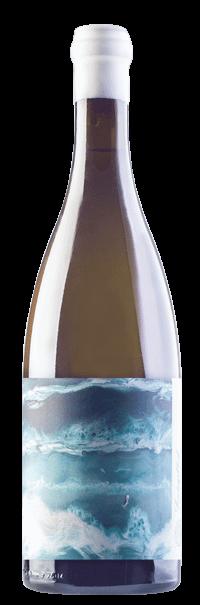 Sondagskloof white wine - Trizanne Signature Wines Sondagkloof Sauvignon Blanc 2020, Western Cape