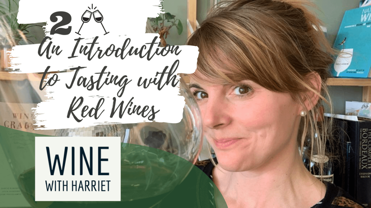 An Introduction to Tasting   Red Wines  - Wine Courses