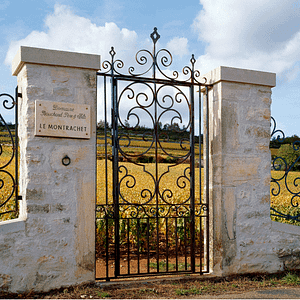 02 2019 Burgundy offers web 300x300 - En Primeur