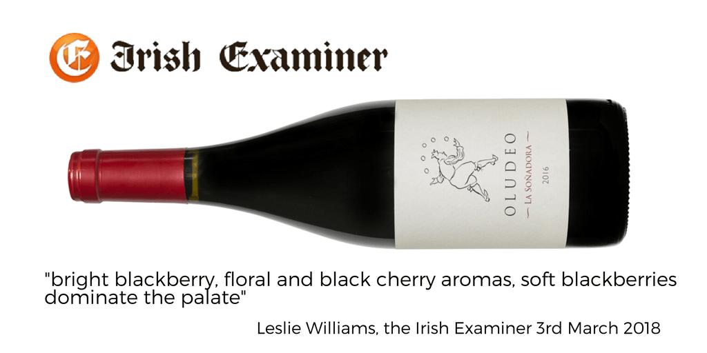 Oludeo Irish Examiner