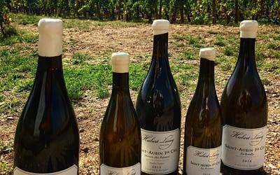 Hubert Lamy, St.Aubin. An online tasting of this famous Burgundian domaine led by Olivier Lamy